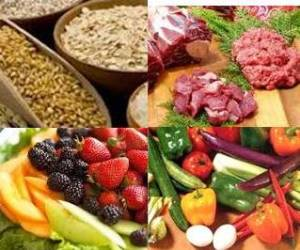 fresh food, grains, fruits, vegetables, meat