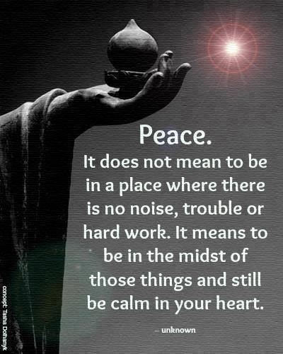 In praise of stillness