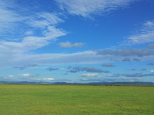 blue sky over the prairie