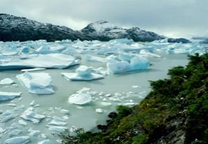 iceberg-field