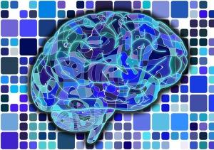 brain-blue-patterns