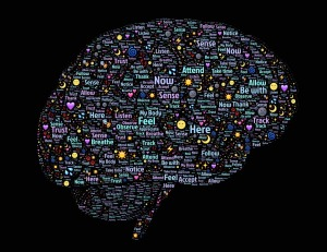 brain-experiences