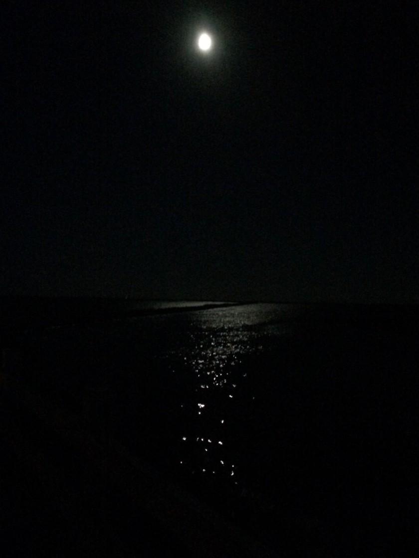 moonlight-9-12-16-960
