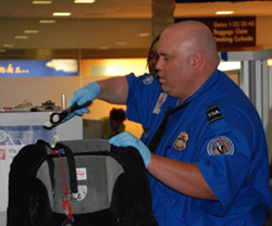 transportation security administration officer screening a bag