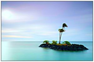 desert island with two palm trees surrounded by sea
